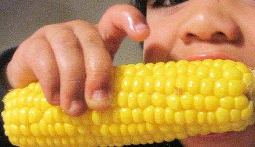 7月20日(土) 講演「TPPで私たちの暮らしはどうなるか <遺伝子組み換え食品編>」